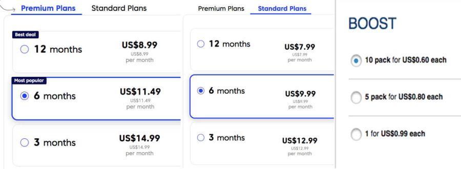 Match.com pricing